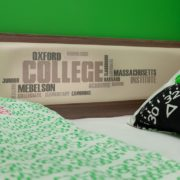 Элемент мягкая спинка Колледж