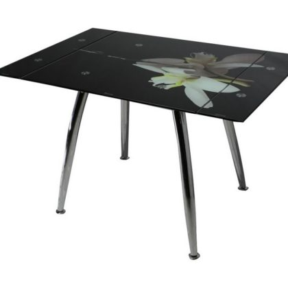 Стол обеденный ТВ-005 (орхидея)